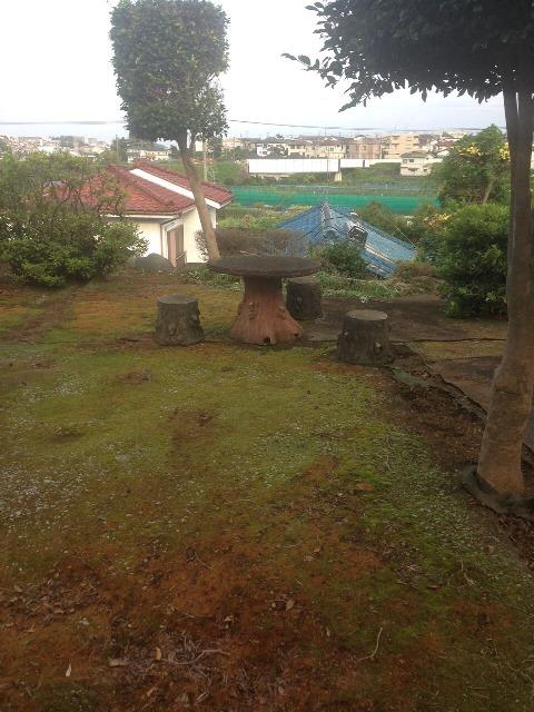 植木・庭木の剪定と伐採、草むしり作業04 作業後