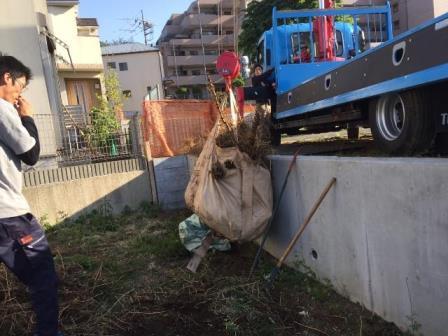 神奈川県川崎市高津区久地-急斜面上の土地の竹根(地下茎)の撤去工事と整地工事のビフォー31