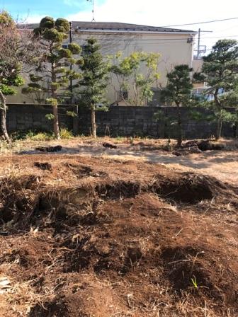 神奈川県逗子市桜山 - 庭木・植木・庭石の解体撤去と処分工事(お庭のリフォーム)のビフォー写真11