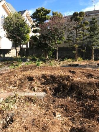 神奈川県逗子市桜山 - 庭木・植木・庭石の解体撤去と処分工事(お庭のリフォーム)のビフォー写真12