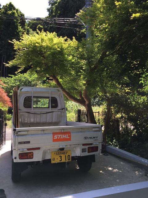 神奈川県鎌倉市雪ノ下-庭木・植木の剪定の作業完了01