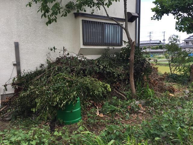 神奈川県茅ヶ崎市菱沼 - 庭木・植木・雑草の草木回収(草木の処分)の作業開始前