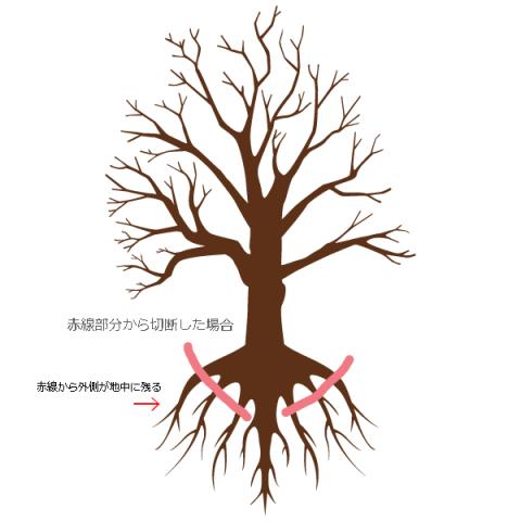 庭木・樹木の抜根作業の際の手順説明