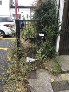 神奈川県横浜市港南区最戸 - 草刈り・お庭の掃除の作業前