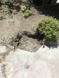 庭石処分 – 神奈川県横浜市金沢区釜利谷の工事風景