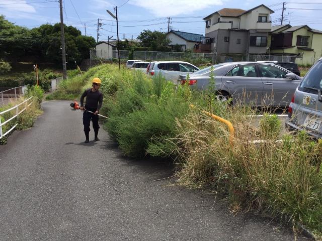 草刈り作業の施工前写真