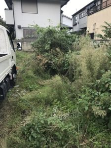 草刈り – 東京都東久留米市で更地・空き地の草刈り風景