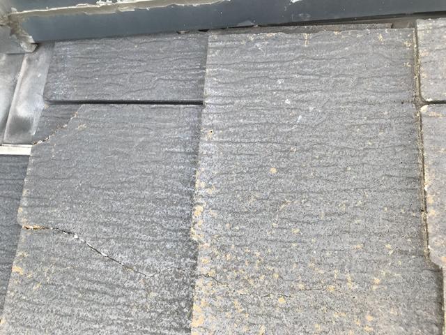 屋根 苔 原因 - 屋根に苔が生えてしまった様子1