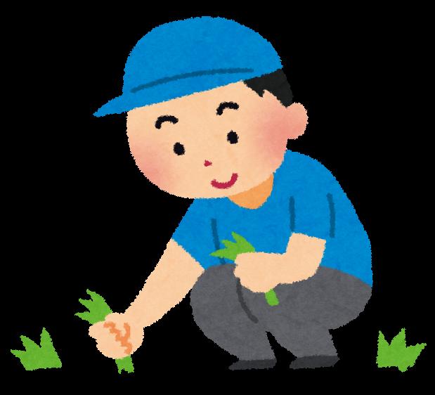 草刈りと草むしりの説明画像(草むしり)イメージ
